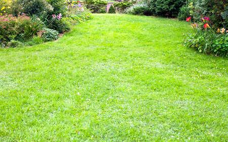Green lawn background in the beautiful backyard garden landscape. Standard-Bild