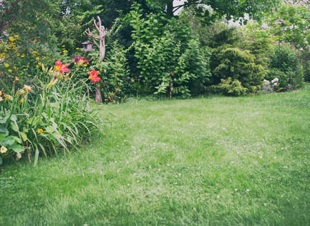 Beautiful backyard garden landscape full of trees and flowers. Green lawn background in the centre. Birds feeder hanging on a tree trunk. Standard-Bild