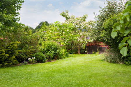 Summer house in the beautiful backyard green garden landscape and fresh, green lawn background with a lot pf space.