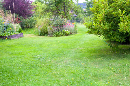 Beautiful domestic garden or backyard landscape. Big lawn, flowers, fruit trees and a place for vegetables to grow. Watering hose on the grass.
