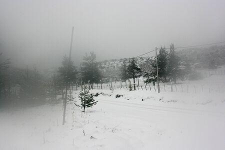 tarnished: Snow in Bariloche