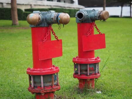 greensward: twin fire hydrant in the garden thailand