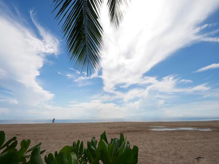 Beach coconut sew view with blue sky Stok Fotoğraf