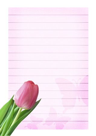 sheet of textured and decorated paper with fresh tulip photo