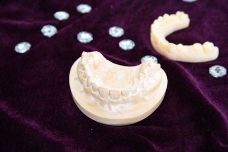 3D printer to print the mandible