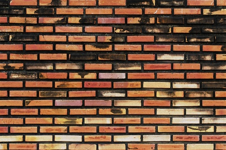 paint brick wall photo