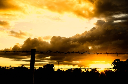 Barbed wire fence and the sun in farmland