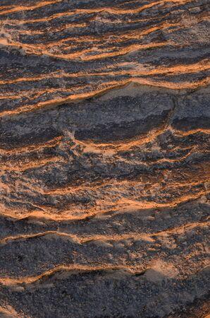 mottle: Brown pietra e alba nella natura