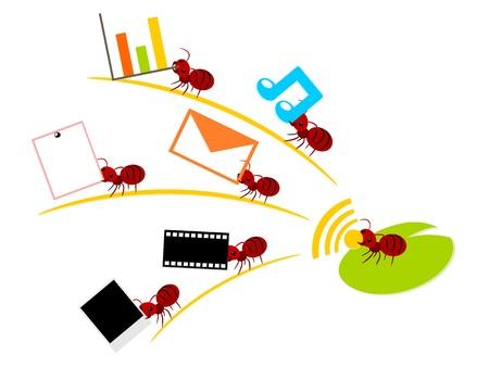 wireless lan: Red ants wireless lan in teamwork power concept illustration