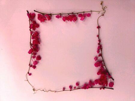 art: Frame by flowers
