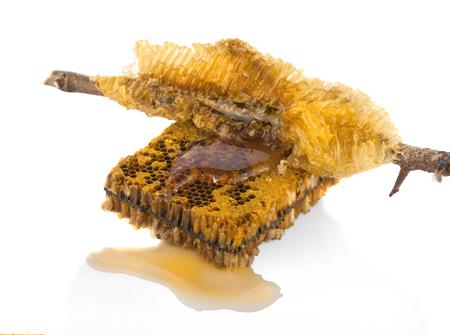 oney: Honeycombs closeup on white background Stock Photo
