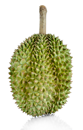Close up green durian isolated on white background. Imagens