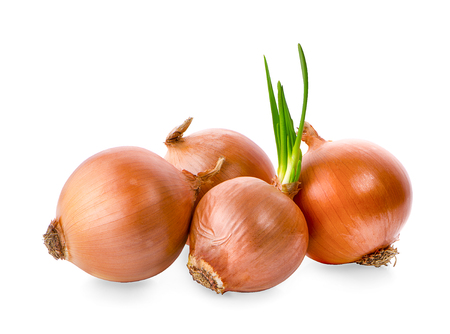 Onions isolated on white background Фото со стока