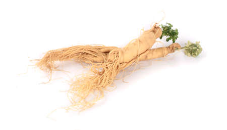 Fresh ginseng root on a white background Stock Photo
