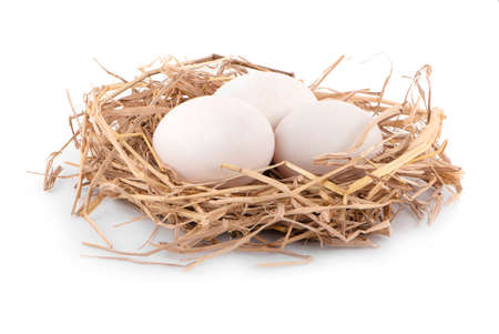 Duck egg close up isolated on white background.