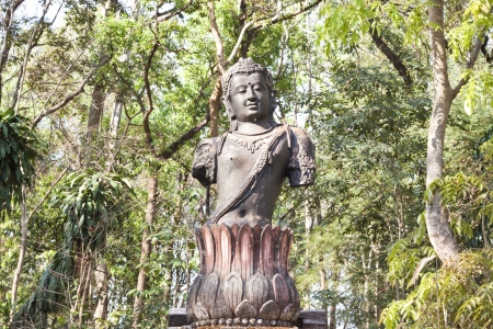 Guan Yin mahayana Buddhism in forest temple photo