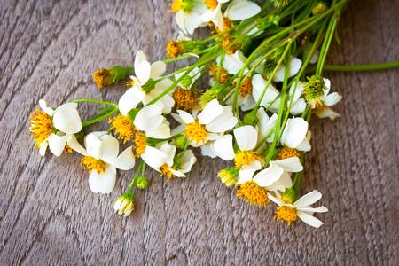 campo de flores: flores blancas sobre fondo de madera