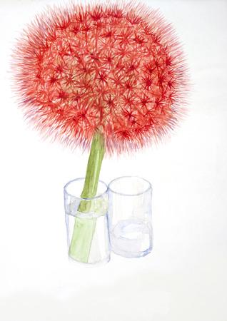 allium: allium flower  watercolor painting Stock Photo