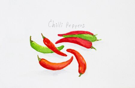 peppers: chillli peppers watercolor painted