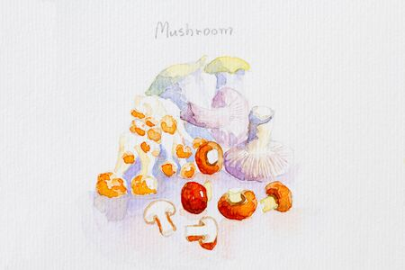 healty food: mushroomwatercolor painted Stock Photo