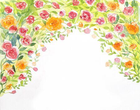jardines con flores: rosas fondo de la acuarela en el papel