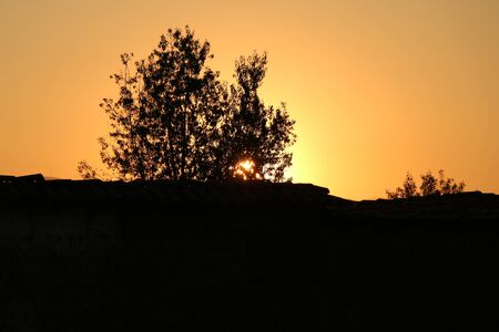 eventide: Sunset and tree in silhouette. Stock Photo