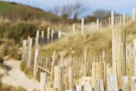 Sc�ne des dunes de sable. Daymer Bay, Cornwall, Royaume-Uni.