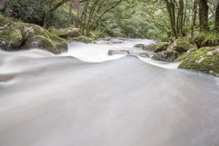 Slow shutter fast flowing river in woodland, Dartmoor, UK. photo