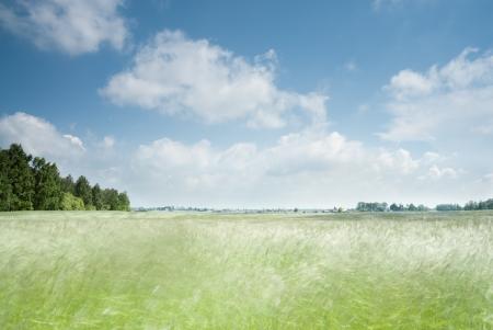 Motion blur in field. Rural landscape, Poland.