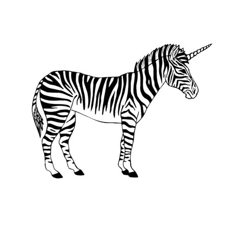 Vector hand drawn doodle sketch black zebra with unicorn horn isolated on white background
