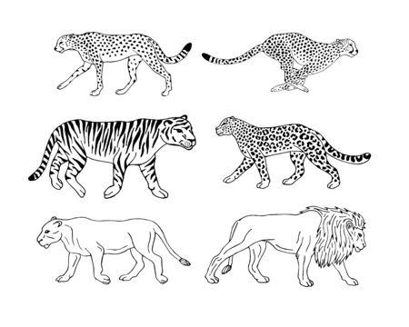 Wektor ręcznie rysowane doodle szkic zestaw kolekcja dzikich kotów ofertowych na białym tle