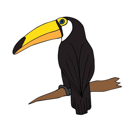 Vector hand drawn doodle sketch toucan bird isolated on white background  イラスト・ベクター素材