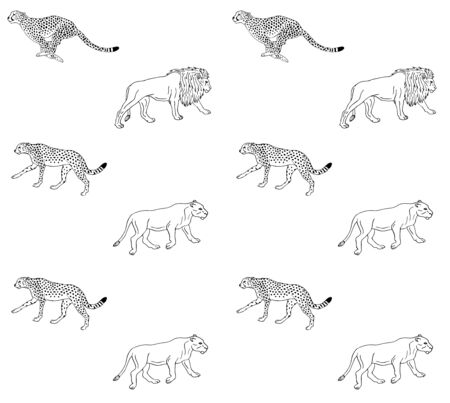 Vector seamless pattern of hand drawn doodle sketch lion and cheetah isolated on white background