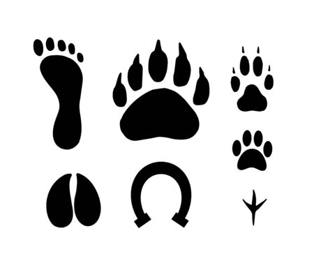 Vector flat black set of animals foot print isolated on white background Standard-Bild - 130088929