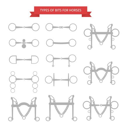 Vector flat gray equestrian bits for horse bridles set isolated on white background
