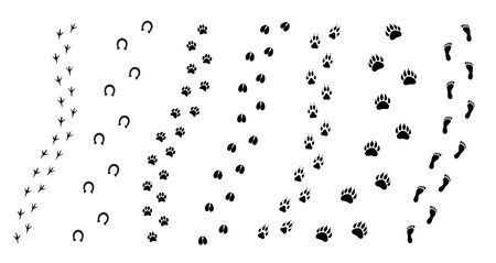 Vector flat black set collection of animals foot print path isolated on white background