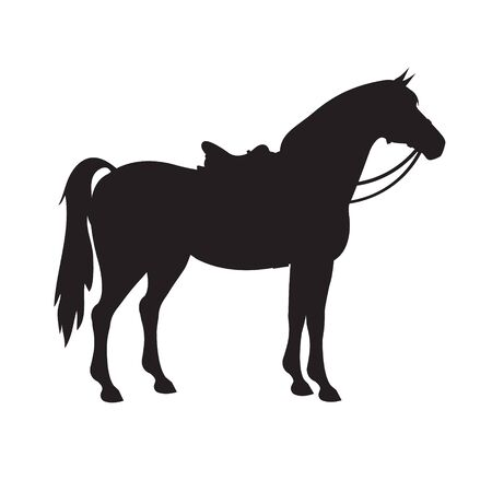 Vector flat black silhouette of horse with saddle and bridle isolated on white background Illustration
