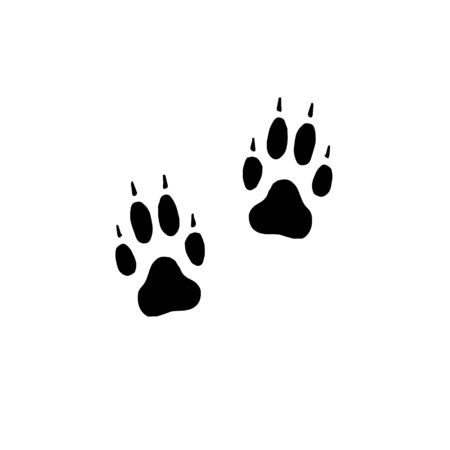 Vector flat black foot prints of wolf or dog steps isolated on white background