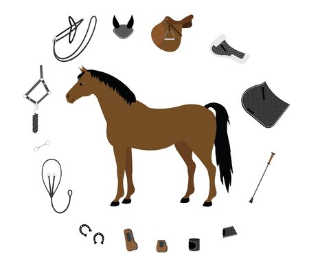 Vector flat cartoon set collection of equestrian horse equipment isolated on white background
