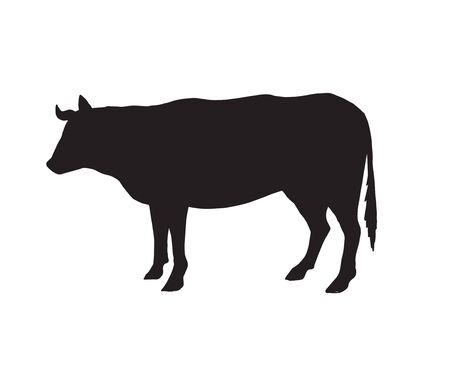 Vector black cow silhouette isolated on white background Illustration
