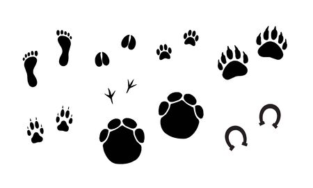 Vector bundle set of black animals foot prints isolated on white background