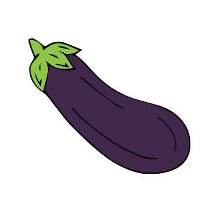 Vector hand drawn sketch violet eggplant isolated on white background