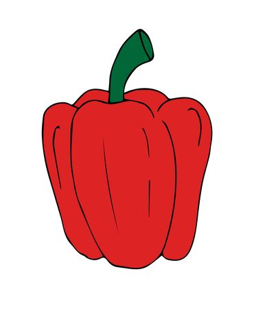 Vector red hand drawn sketch bell pepper isolated on white background