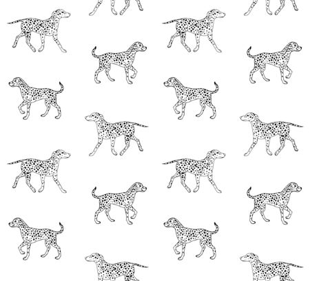 Vector seamless pattern of hand drawn sketch Dalmatian dog isolated on white background