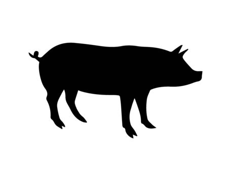Vector black pig silhouette isolated on white background