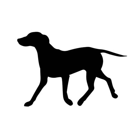 Vector black Dalmatian dog silhouette isolated on white background