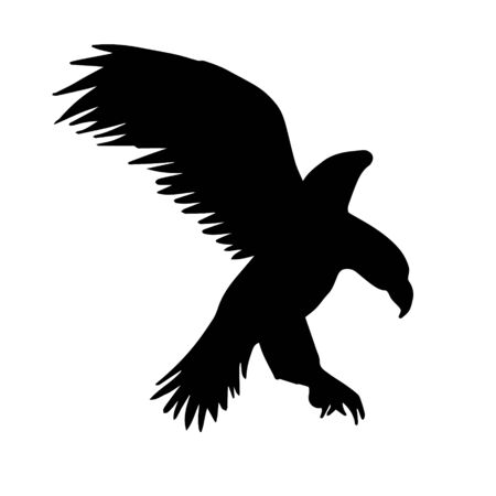 Vector flying eagle silhouette isolated on white background