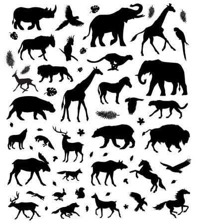 Vector flat black set bundle of different wild animals silhouette isolated on white background