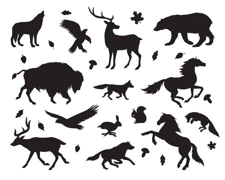 Vector black set bundle of wild American animals silhouette isolated on white background