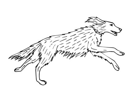 Vector hand drawn sketch hunting setter dog isolated on white background Stock Illustratie